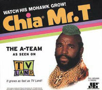 Tis the Season for The Clapper and Chia Pet Commercials