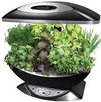 aerogarden weed harvest. the aerogarden sells itself as a great way for people to have fresh herbs and lettuce always available in their kitchens. infomercial aerogarden weed harvest t