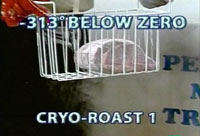 A cryogenically frozen 'Cryo-Roast' on the Flavor Wave Oven infomercial