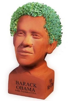 'Determined' Chia Obama