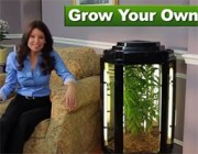 """Phototron: Turning Your Living Room into a """"Medicinal Herbs"""" Dispensary"""